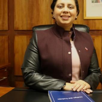 tehuelche noticias: Digitalización del Estado y la red ChileAtiende del IPS como precursores